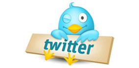 como usar o twitter para divulgar o blog site