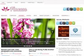Finesse-Fthemes-com-Um-lindo-Template-de-Beleza-para-Wordpress