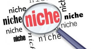 site-de-nicho-de-sucesso-pequena